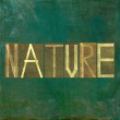 "Earthy background image and design element depicting the word ""Nature"" - Stock Photo"