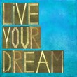 "Earthy background and design element depicting the words ""Live your dream"" — Stock Photo"