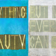 "Earthy background image and design element depicting the words ""everything has beauty, but not everyone can see it"" - Stock Photo"