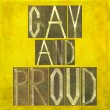 "Stock Photo: Earthy background image and design element depicting words ""Gay and proud"""