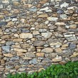 Stone wall — Stock Photo #31243895