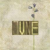 Ordet för juni månad — Stockfoto