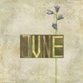 Word for the month of June — 图库照片