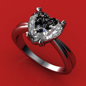 The beauty wedding ring — ストック写真