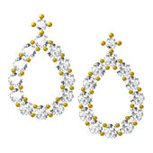 The beauty diamond earrings — ストック写真