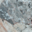 A background texture of shale rock. — Photo