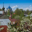 Onion domes of Suzdal — Stock Photo