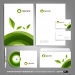 Corporate identity template for business artworks — Stock Vector #43037627