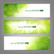 Set of vector banners with fresh green leaves — Stock Vector