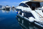 Luxury Yachts in marina — Stock Photo
