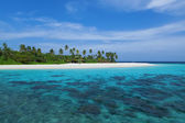 Maldives Island with palm trees — Stock Photo