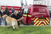 LONDON, UK - OCTOBER 20: A fire brigade dog is prepared to demon — Stock Photo