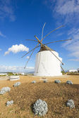 Traditional Old Windmill — Stock Photo