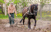 Man plows garden — Stock Photo