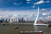 Erasmus Bridge in Rotterdam — Stock fotografie