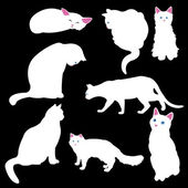 Biały kot sylwetki — Wektor stockowy