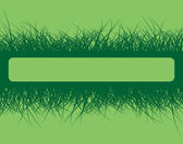 Grass frame on green background — ストックベクタ