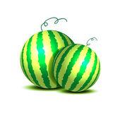 Watermelon on white — Stock Vector
