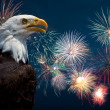 Fourth of July — Stock Photo #43006845