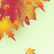 Background from autumn leaves . — Stock Vector