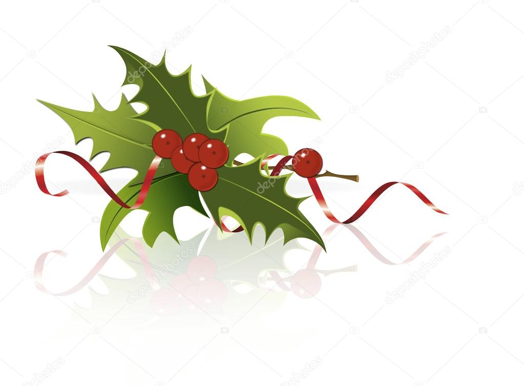 Holly berry isolated on white background. — Stock Vector #16347291