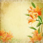 Retro vintage background with lily. — Stock Vector