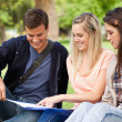 Close-up of students studying — Stock Photo