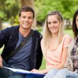 Foto Stock: Portrait of students studying