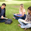 Royalty-Free Stock Photo: Three students studying together