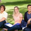Portrait of three students in a park — Stock Photo