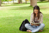 Teenager sitting while reading her textbook — Stock Photo