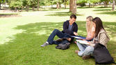 Tutoring in a sunny park — Stock Photo