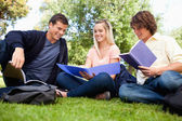 Low angle-shot of three students in a park — Stock Photo