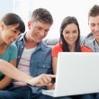 A smiling group of friends looking at the laptop with one girl p — Stock Photo