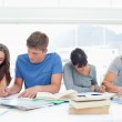 Four students sit beside each other and study — Stock Photo