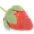 strawberry — Stock Photo #13967709