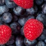 Raspberry on the blueblerries — Stock Photo