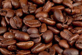 Coffee seeds laid out together — Stock Photo