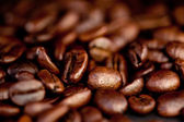 Blurred coffee seeds laid out together — Stock Photo