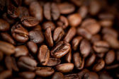 Dark blurred coffee seeds laid out together — Stock Photo
