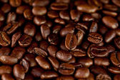 Dark coffee seeds laid out together — Stock Photo