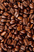 Close up of coffee seeds — Stock Photo