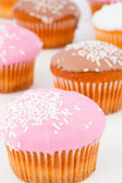 Close up of many muffins with icing sugar — Stock Photo