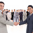 Business shaking hands — Stock Photo #14078542