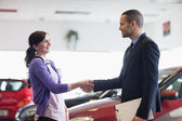 Salesman and a woman shaking hands — Stock Photo