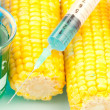 Syringe on corn - Stock Photo