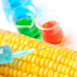 Syringe on corn next to beakers — Stock Photo
