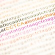 List of dna analysis letters — Stock Photo