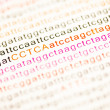 List of dna analysis letters — Foto de Stock