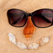 Shellfishes and sunglasses representing a face - Stock Photo